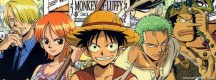 One piece Luffy Team