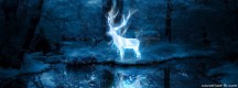 Sort Patronus d'Harry Potter